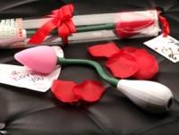 Вибратор Подарочная розовая силиконовая роза с вибрацией en-au-2125-2